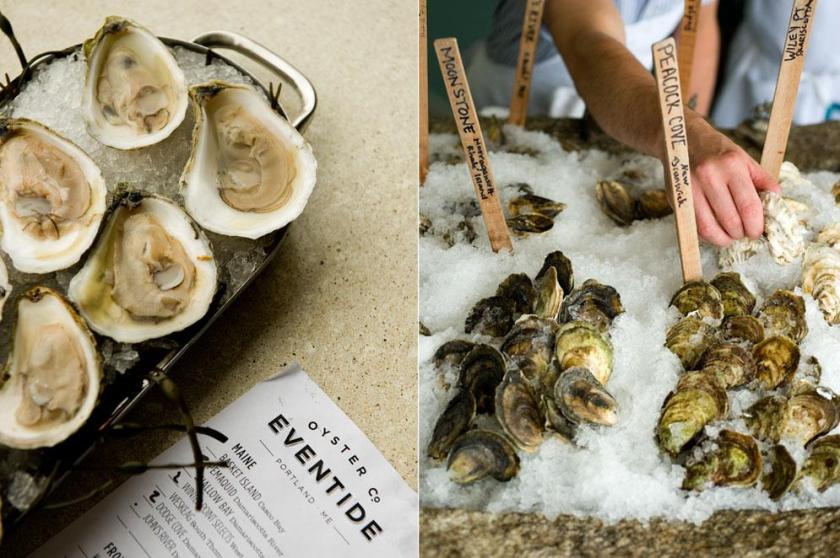 oysters_oysters1